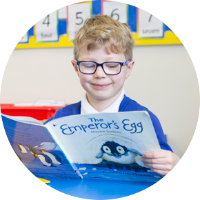 Pupil reading the Emperor's Egg reading book in class.